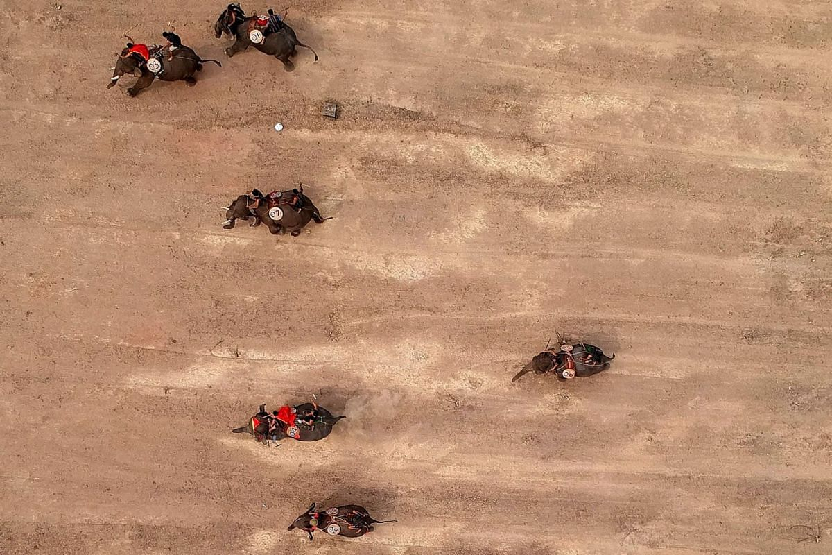 This aerial photograph shows mahouts racing their elephants during the Buon Don elephant festival in Vietnam's central highlands of Dak Lak province on March 12, 2019. Locals say the race is a celebration of the much revered animals - traditionally t