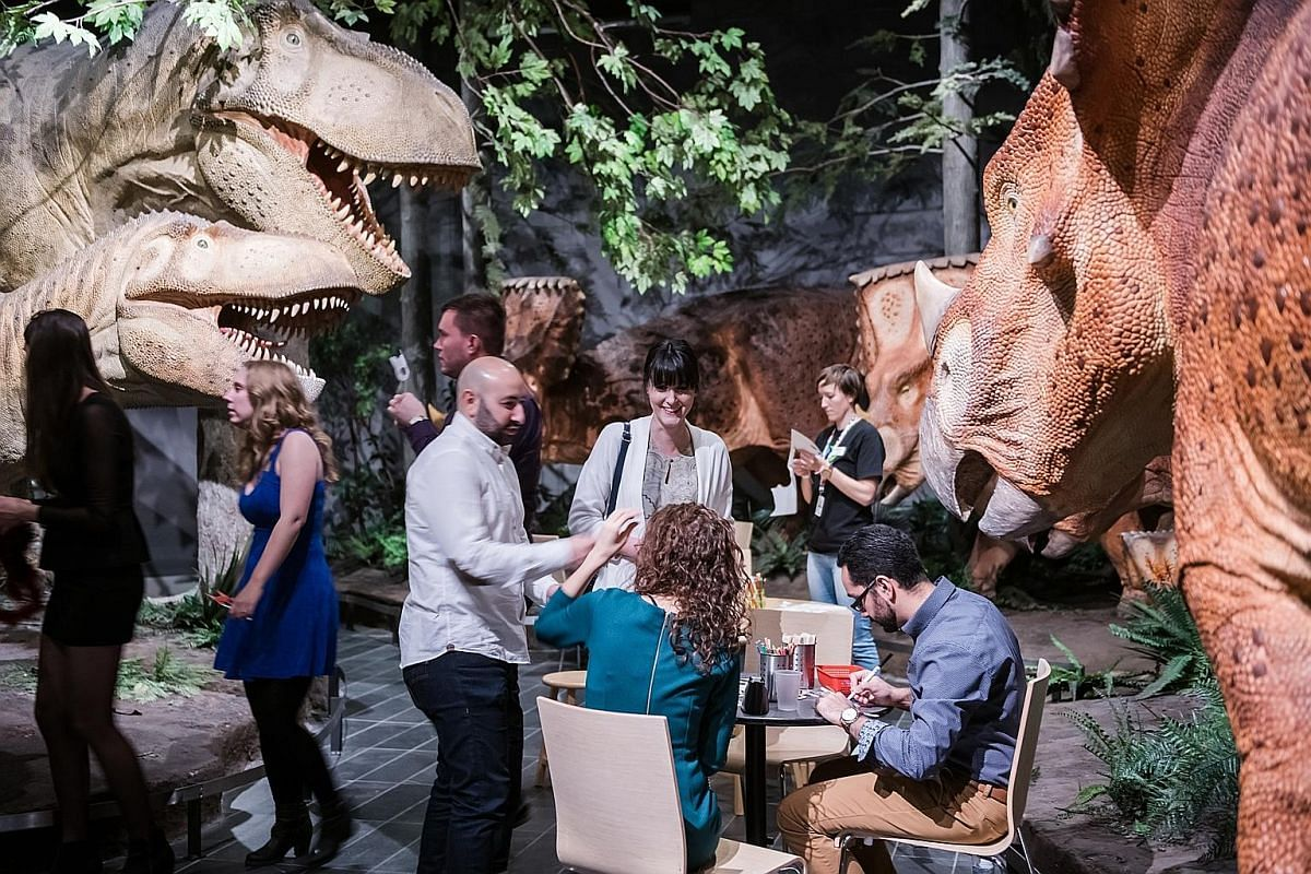 Party at the Canadian Museum of Nature for Nature Nocturne, with two floors for dancing and engaging with the likes of sloths, iguanas and giant jellyfish.