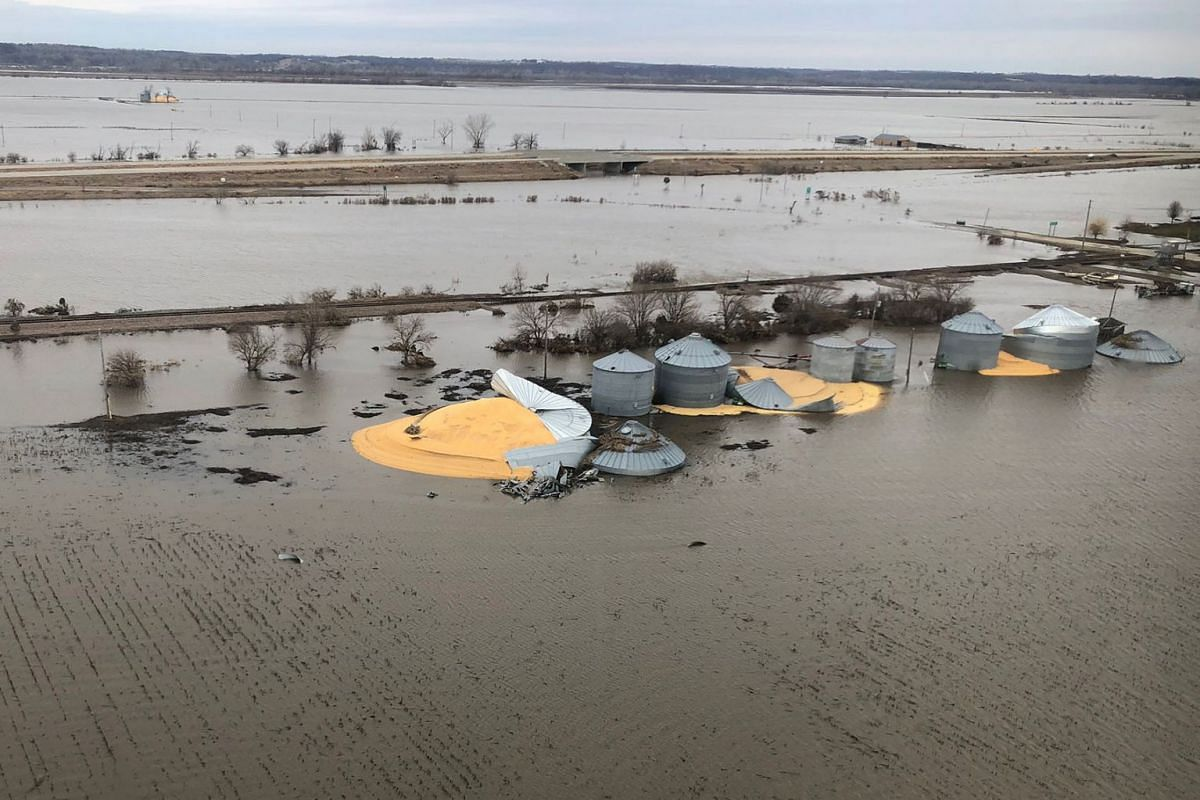 The contents of grain silos which burst from flood damage are shown in Fremont County, Iowa, U.S., March 29, 2019. PHOTO: REUTERS