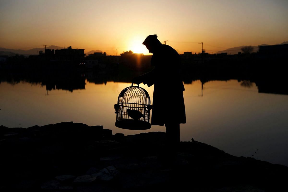 A man holds his caged partridge as the sun rises in the old part of Kabul, Afghanistan April 8, 2019. PHOTO: REUTERS