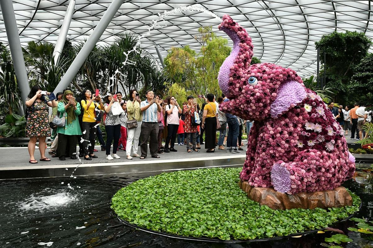 Visitors taking photos at the Topiary Walk in the Canopy Park located at the top level of Jewel Changi Airport, on April 11, 2019. From 1pm on Thursday (April 11) to 10pm next Tuesday, about half a million people who had signed up for free preview ti