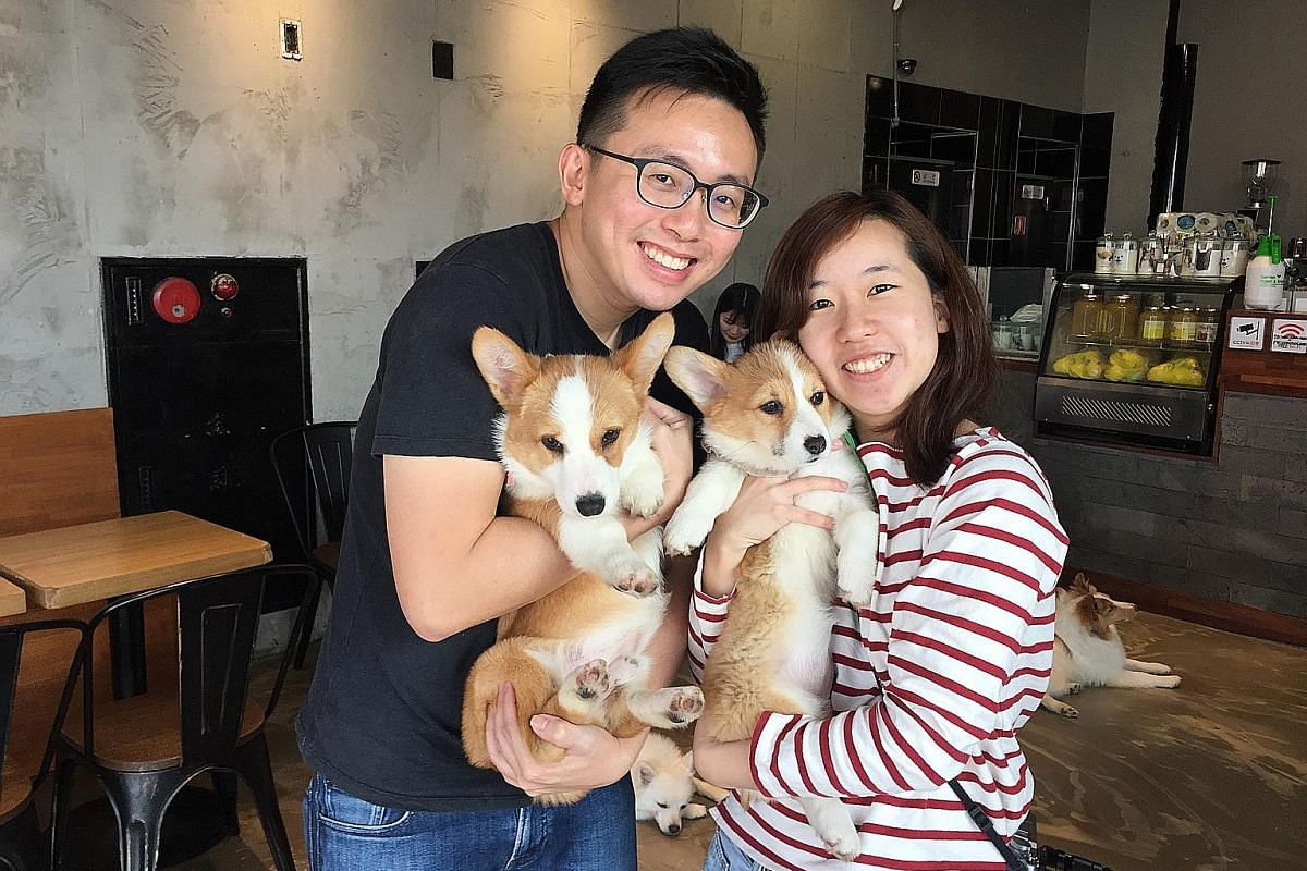 Magazine writer Koh Eng Beng and his girlfriend Charmaine Wu, a photographer, at a pet cafe in Seoul, South Korea. They spent four months travelling around Seoul, Kyoto and Taipei during his sabbatical year in 2017.