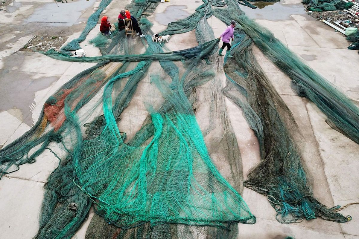 Chinese fisherfolks clears up their fishing nets as they prepare for the summer fishing moratorium at a port in Lianyungang in China's eastern Jiangsu province on April 24, 2019. PHOTO: AFP