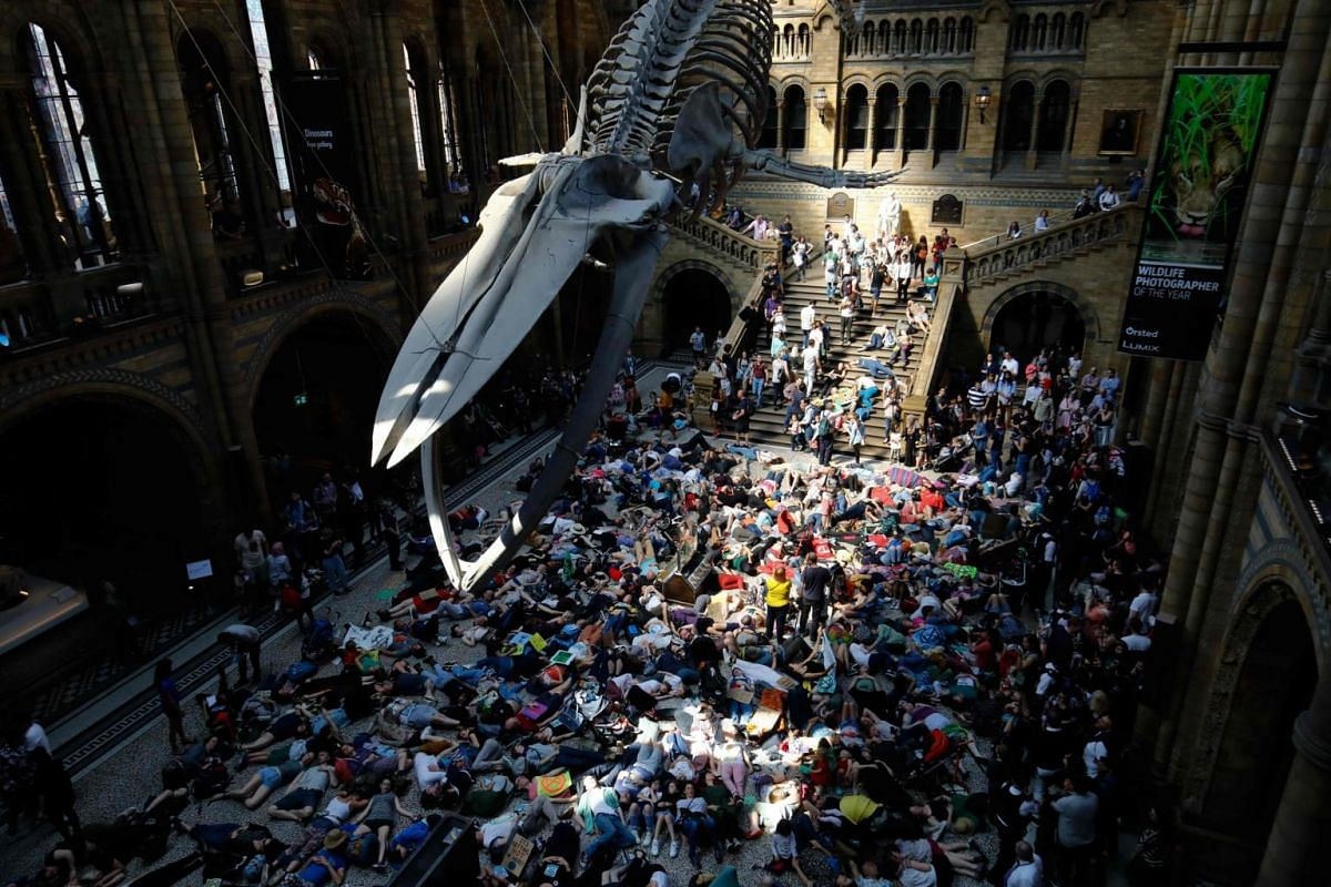 """Extinction Rebellion activists perform a mass """"die in"""" under the blue whale in the foyer of the Natural History Museum in London, on April 22, 2019, on the eighth day of the group's protest calling for political change to combat climate change."""