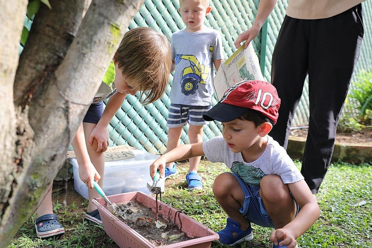 At The Garden House Preschool in Bukit Batok, the children spend at least an hour each day in its vegetable and fruit garden, and love digging up worms from the compost heap. At Shaws Preschool @ Mountbatten Road, the children sift through used or do