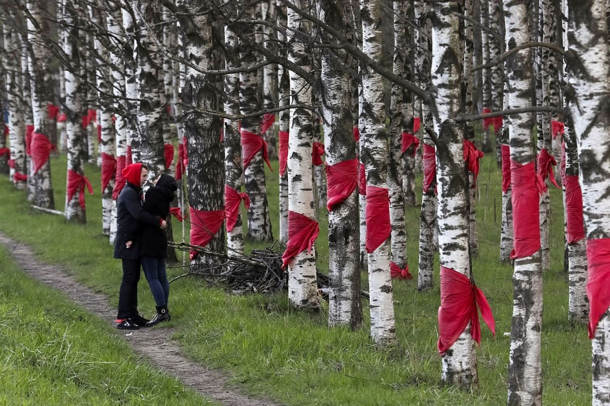 A couple share a moment near trees tied with red scarves in memory of the children who died in the Leningrad siege, part of World War Two, outside Saint Petersburg, Russia May 4, 2019. PHOTO: REUTERS