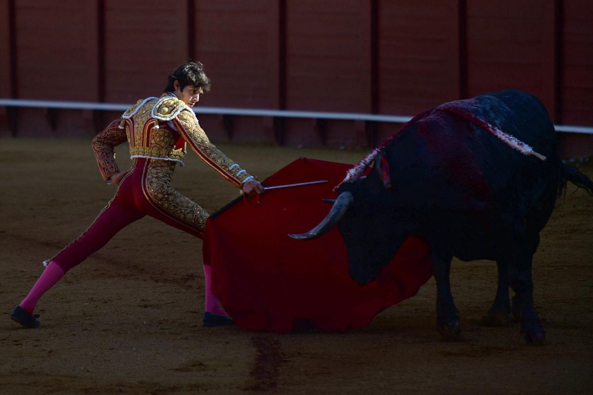 French bullfighter Sebastian Castella performs a pass to a bull with a muleta during a bullfight at the Real Maestranza bullring in Seville on May 12, 2019.
