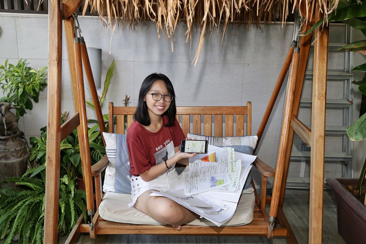 Secondary 4 student June Liao (above), 16, makes revision notes after every chapter covered by her teacher and shares them with her followers. She no longer finds studying a chore and her grades have improved.