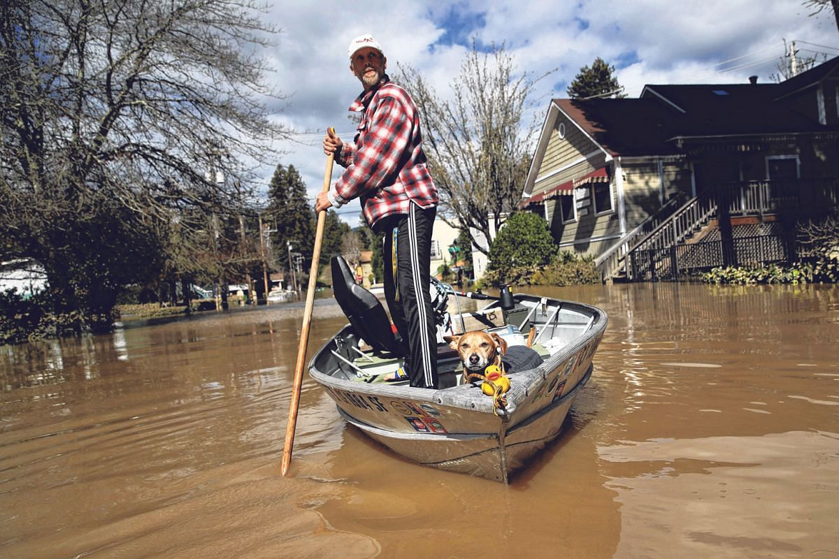 A resident and his dog navigating a flooded neighbourhood last February in Guerneville, California after the Russian River crested over the flood stage and floodwaters inundated the town.