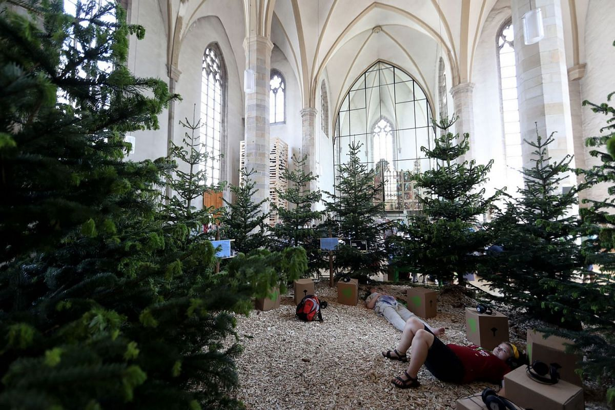 A forest installation in a church is seen during the German Protestant Kirchentag (Church Day) in Dortmund, Germany, June 19, 2019. PHOTO: EPA-EFE