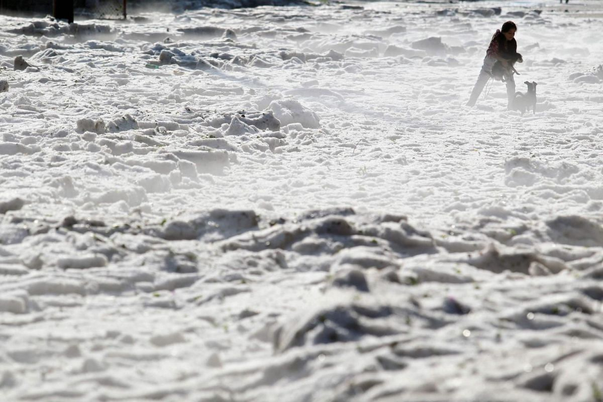 A woman and her dogs walk on hail in the eastern area of Guadalajara, Jalisco state, Mexico, on June 30, 2019.