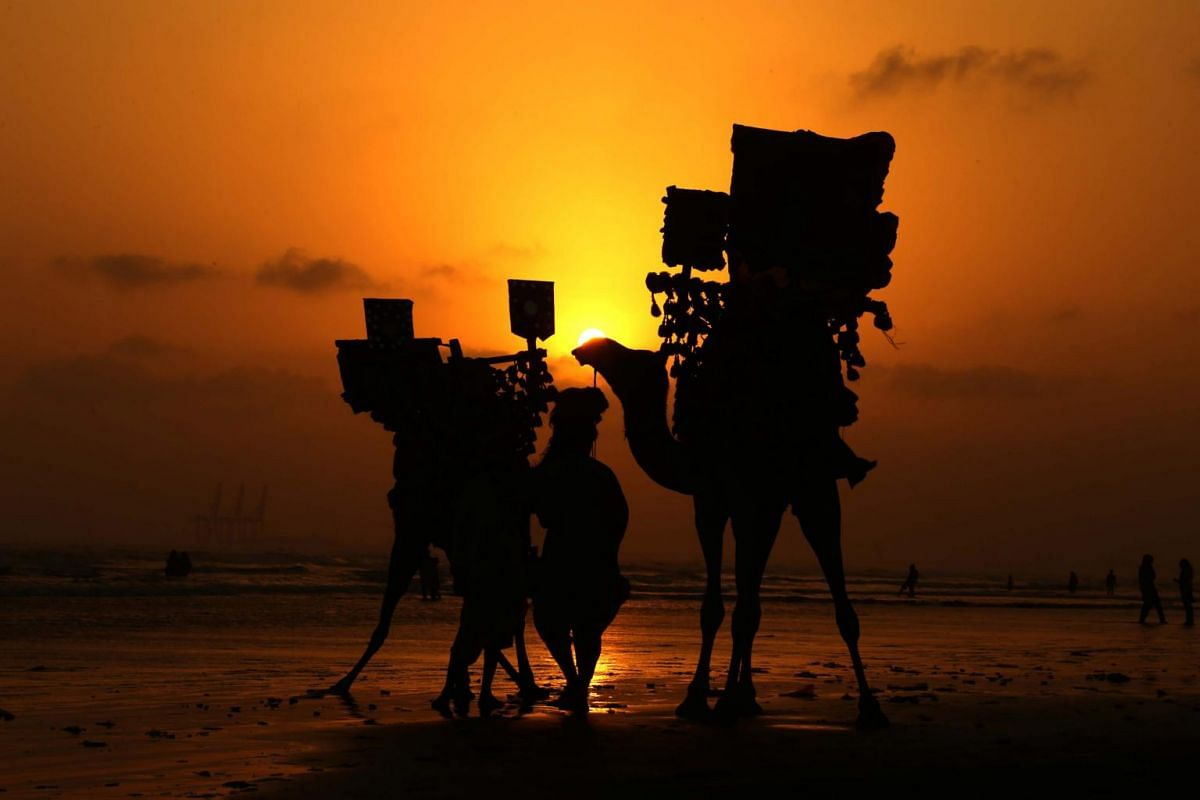 A man walks his camels during sunset at a beach in Karachi, Pakistan, on July 3, 2019.