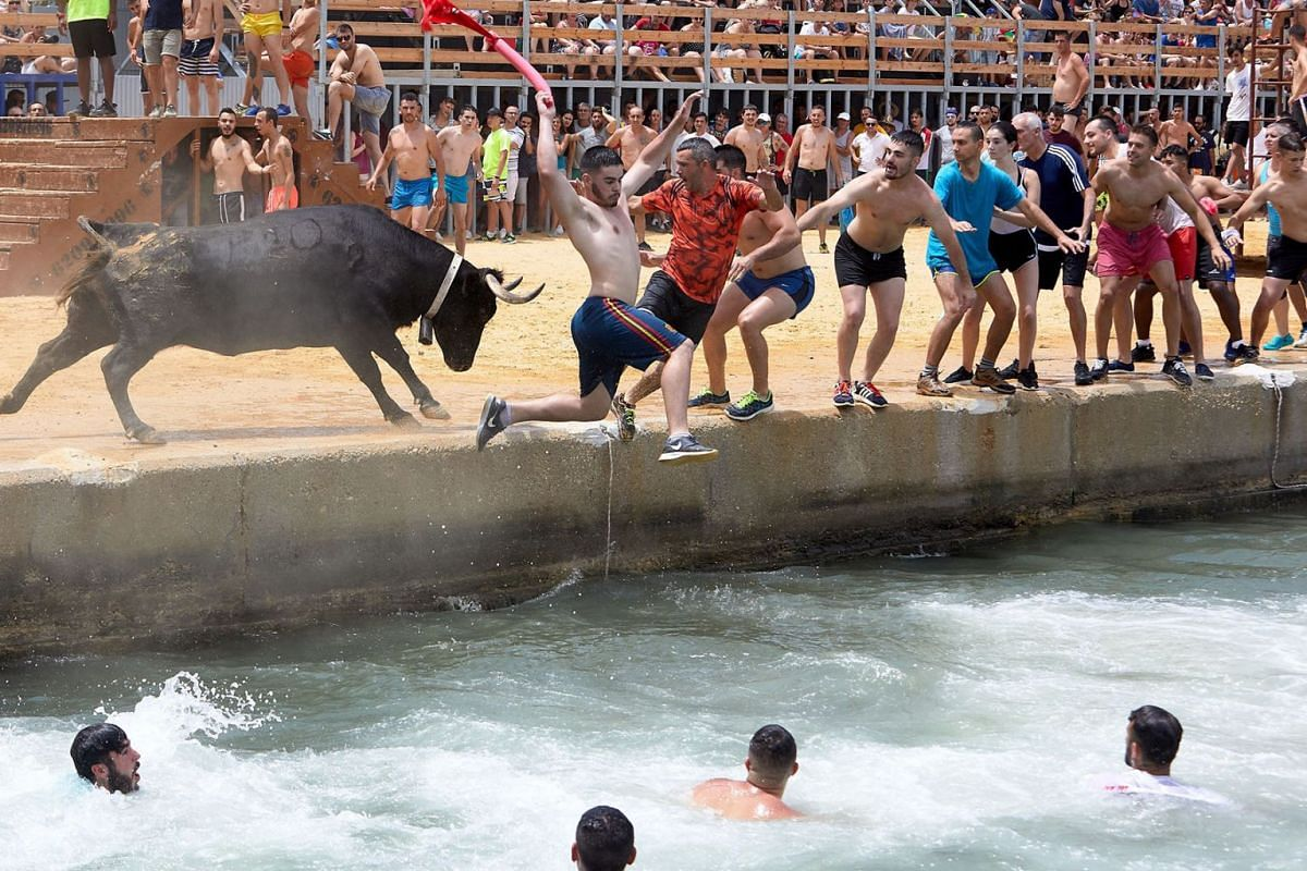 People jump into water as they are chased by a bull during the traditional 'Bous a la mar' (lit. Bulls to the Sea) fiesta in Denia, eastern Spain, July 7, 2019. The aim of the event is to lead young bulls to the water and make them swim. PHOTO: EPA-E
