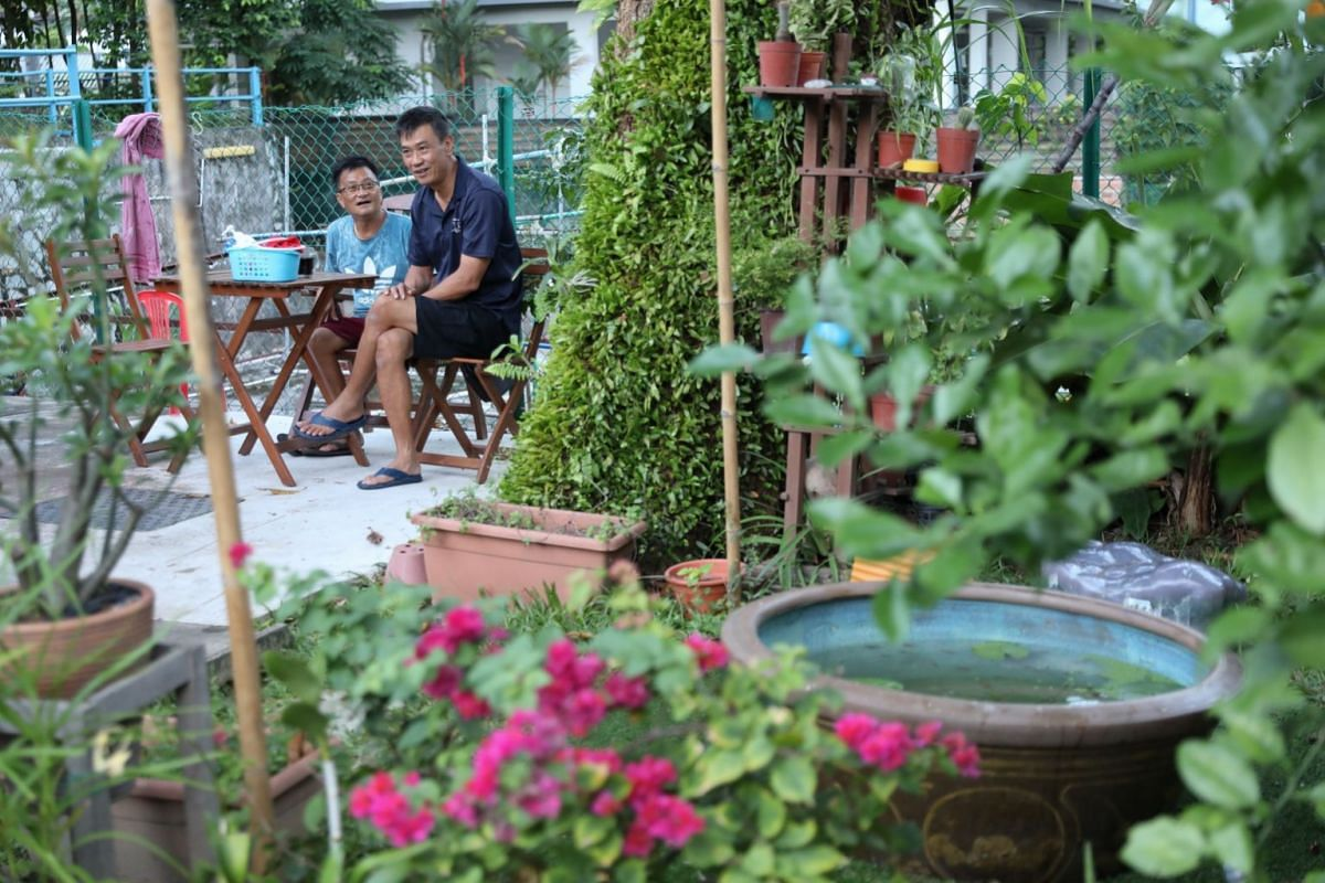 Mr Kang meets his friend, carpenter Kuan Kiong Lik, 62, and has a hot cup of coffee before the day begins. Mr Kang has formed the habit of arriving two hours before work to avoid starting the day flustered.