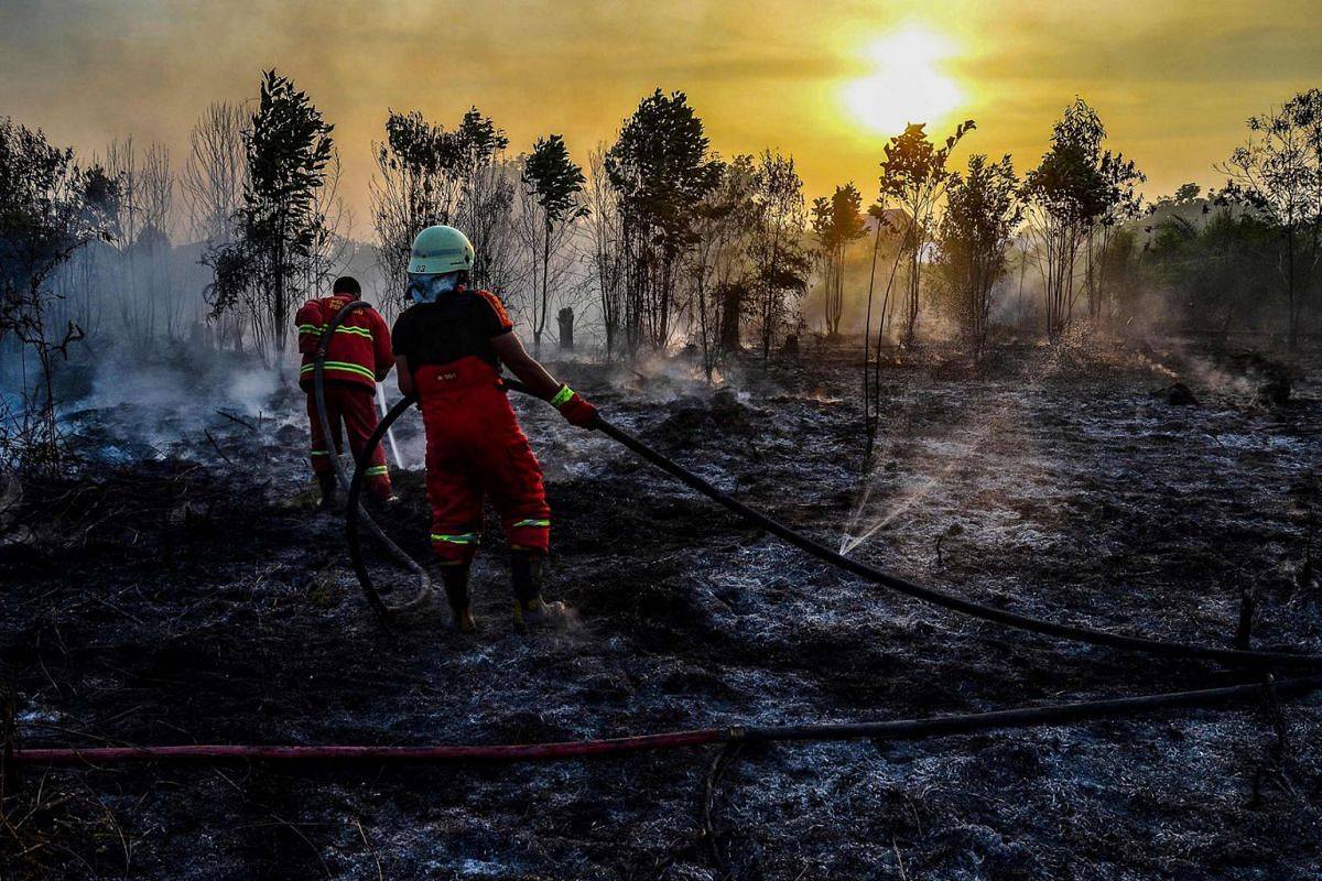 Firefighters extinguish a fire in Kampar, Riau province on Indonesia's Sumatra island on August 13, 2019. PHOTO: AFP