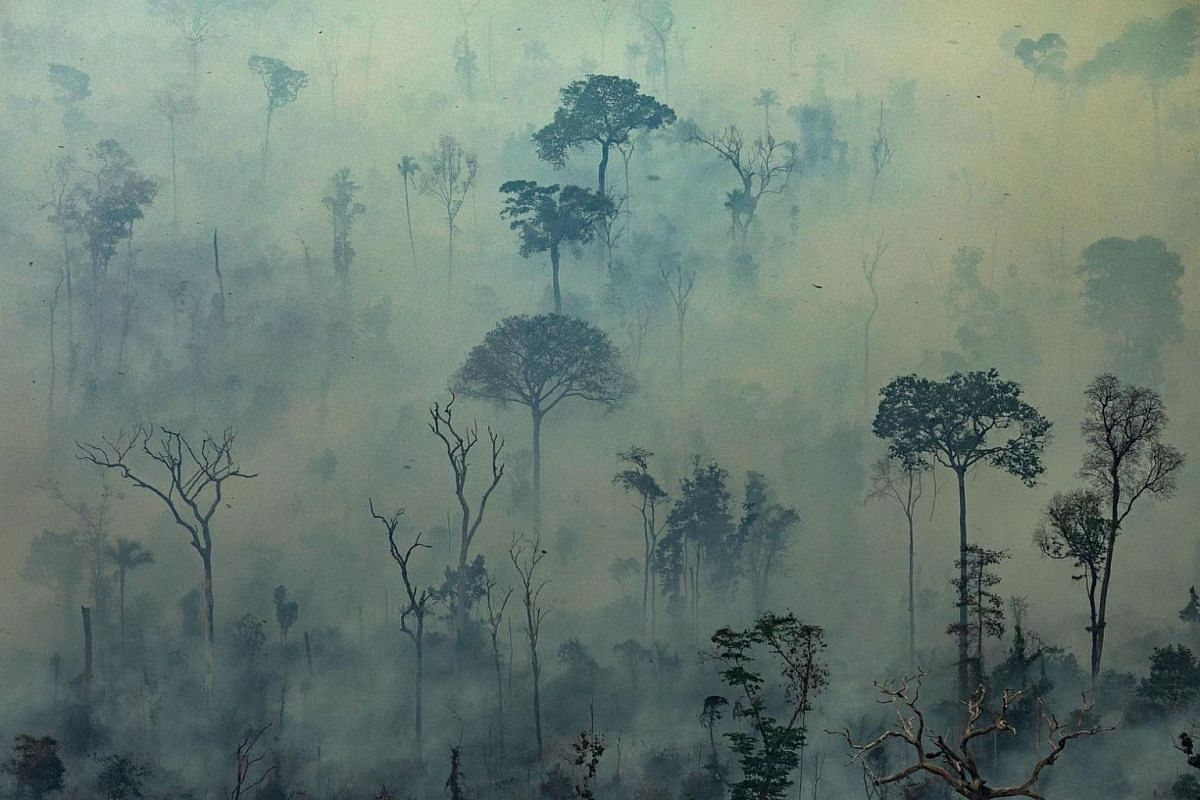 A handout picture released by Greenpeace shows smoke shrouding the forest in the Amazon biome in the municipality of Altamira, Para state, Brazil, on Aug 23, 2019.