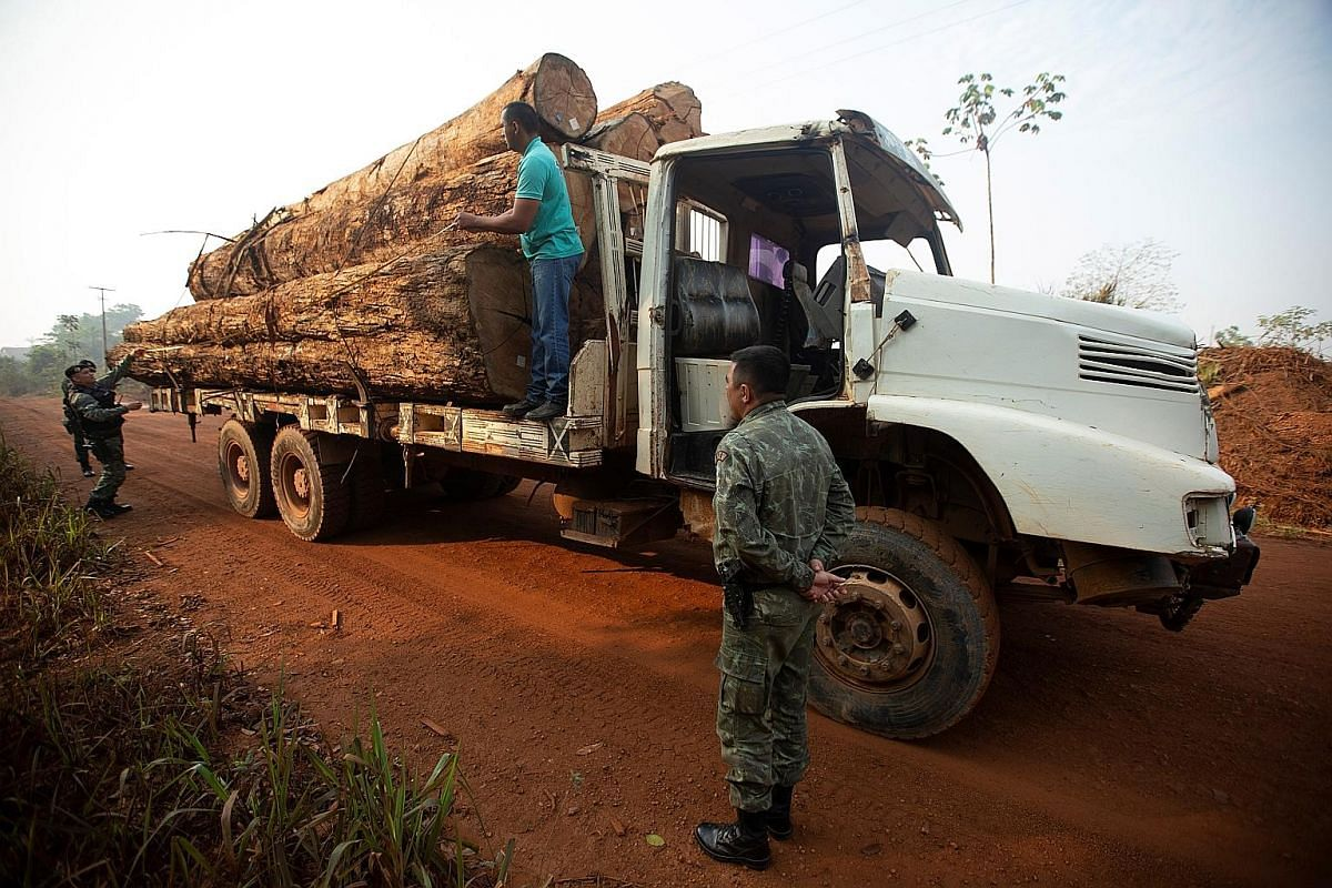 Brazilian police questioning a truck driver in Rondonia state during a joint operation against illegal logging on Sunday. PHOTO: EPA-EFE