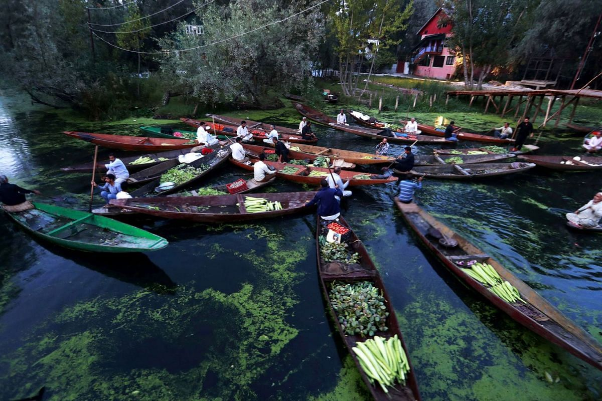 Vegetable vendors assemble at a floating market in the interior of Dal lake during restrictions after scrapping of the special constitutional status for Kashmir by the Indian government, in Srinagar, September 5, 2019. PHOTO: REUTERS