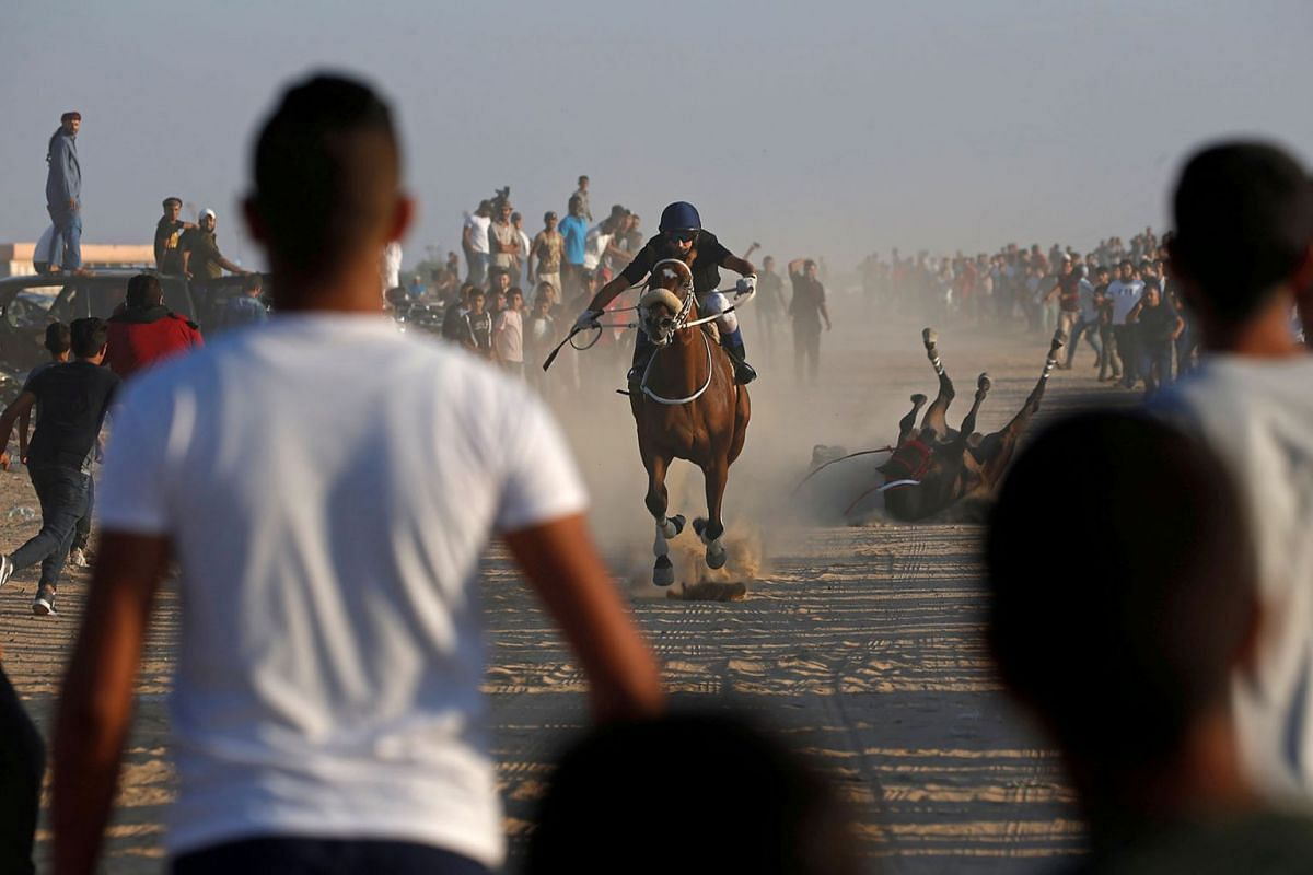 A Palestinian jockey competes as another falls during a local horse racing on the land of Gaza destroyed airport, in Rafah in the southern Gaza Strip September 10, 2019. PHOTO: REUTERS