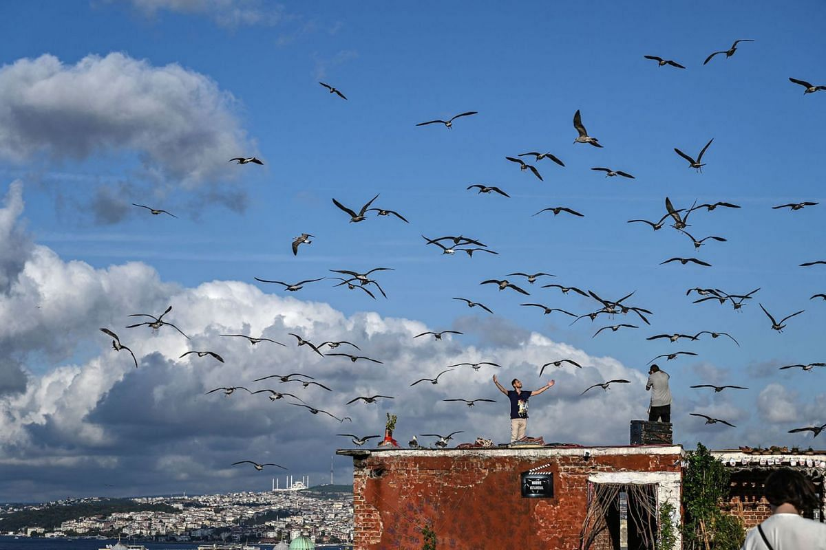 A man poses for a friend on a roof as seagulls fly over them on September 10, 2019 in Istanbul. PHOTO: AFP