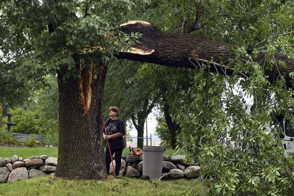Susan Larson sweeps up debris from the sidewalk where a tree fell over during a tornado, Wednesday, Sept. 11, 2019, in Sioux Falls, S.D. A storm carrying three tornadoes struck South Dakota's largest city overnight, leaving a trail of destroyed build