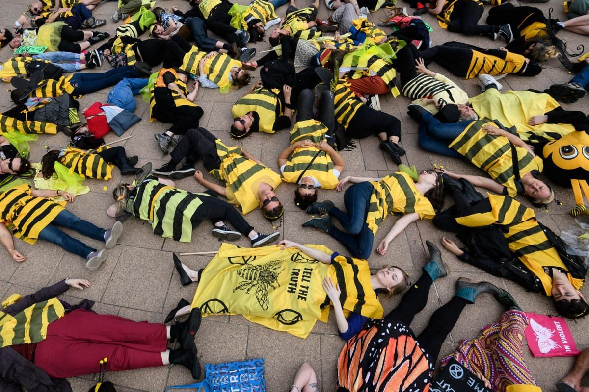 Activists from environmental movement Extinction Rebellion dressed in bee-themed costumes stage a die-in during a protest held to draw attention to climate change.