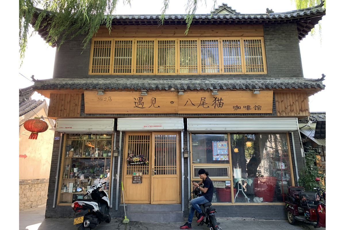 In Jinan, a hipster cat cafe favoured by artsy millennials sits by a spring-fed canal in Qushuiting Street.
