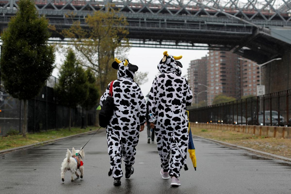 People dressed as cows walk towards the Tompkins Square Halloween Dog Parade in Manhattan, New York City, on Oct 20, 2019.