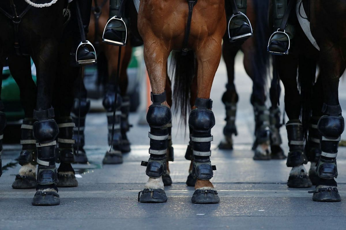 Protective gear are seen on the horses of mounted security forces during a protest against Chile's government, at Providencia, a wealthy neighbourhood, in Santiago, Chile, Nov 7, 2019.
