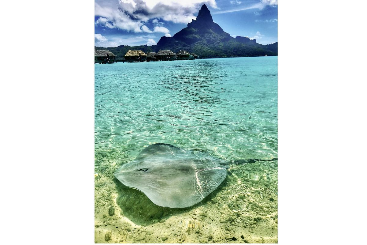 Pacific islands paradise of Tahiti. The destination can be reached via an award flight.