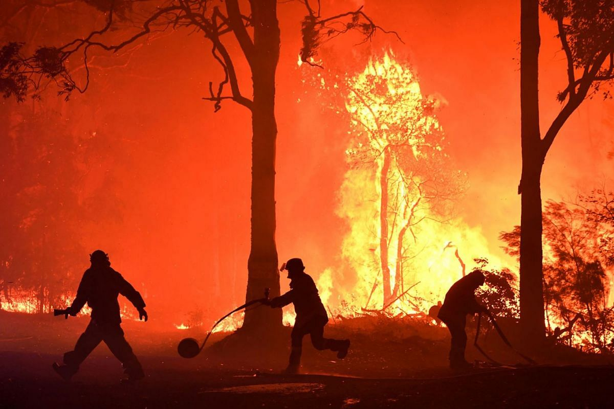 Rural Fire Service (RFS) volunteers and NSW Fire and Rescue officers fight a bushfire encroaching on properties near Termeil, Australia, December, 3, 2019. PHOTO: AAP IMAGE VIA REUTERS