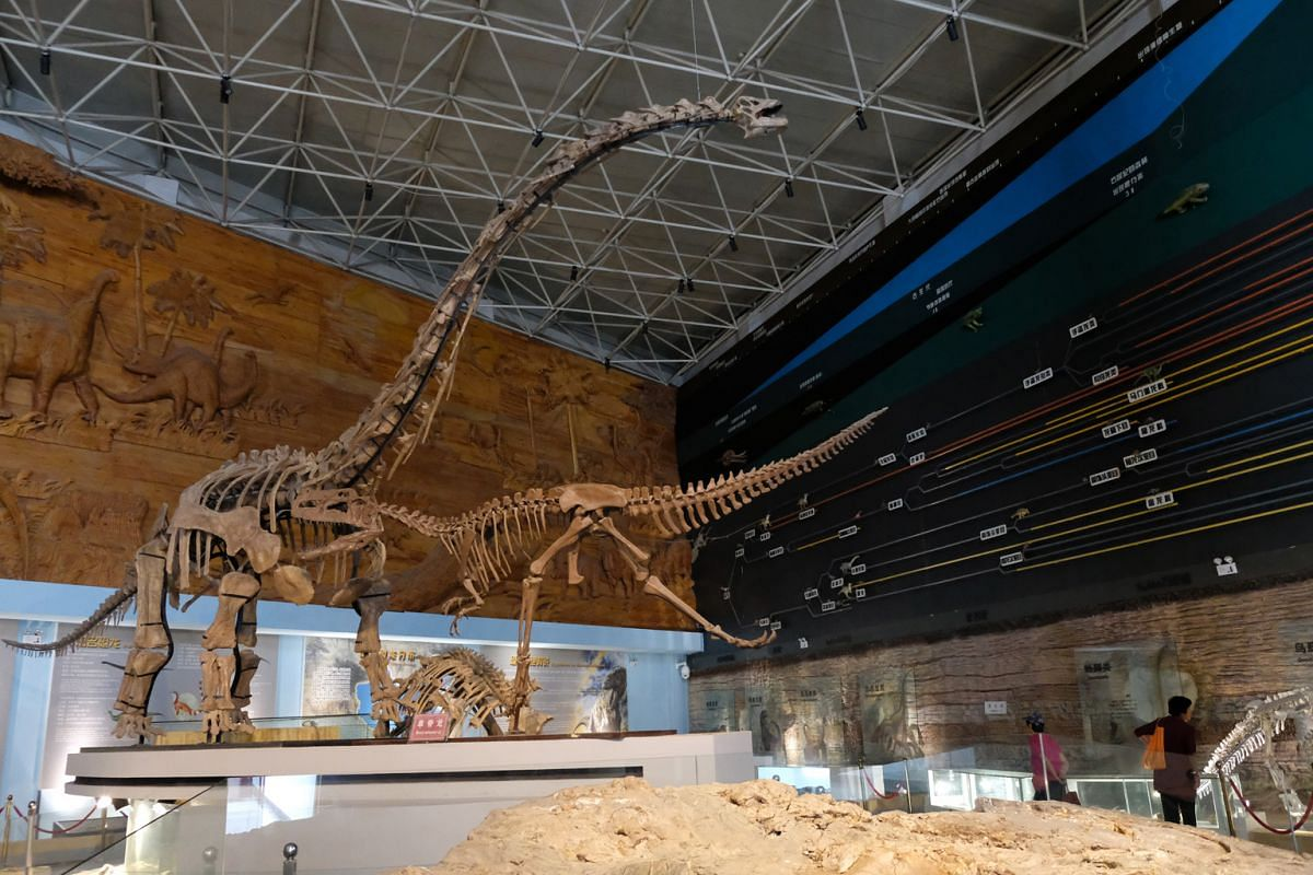 Palaeontologists in Beijing say it is getting increasingly difficult to do fossil digs in Liaoning because local officials want to keep fossils in their province to build museums, such as the Palaeontological Fossil National Geo-park in Chaoyang.