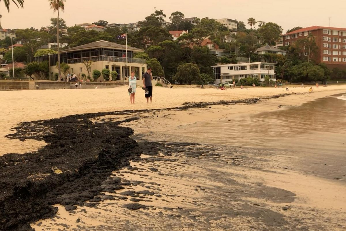 Ash from bushfires on Balmoral Beach in Sydney on Dec 7, 2019.