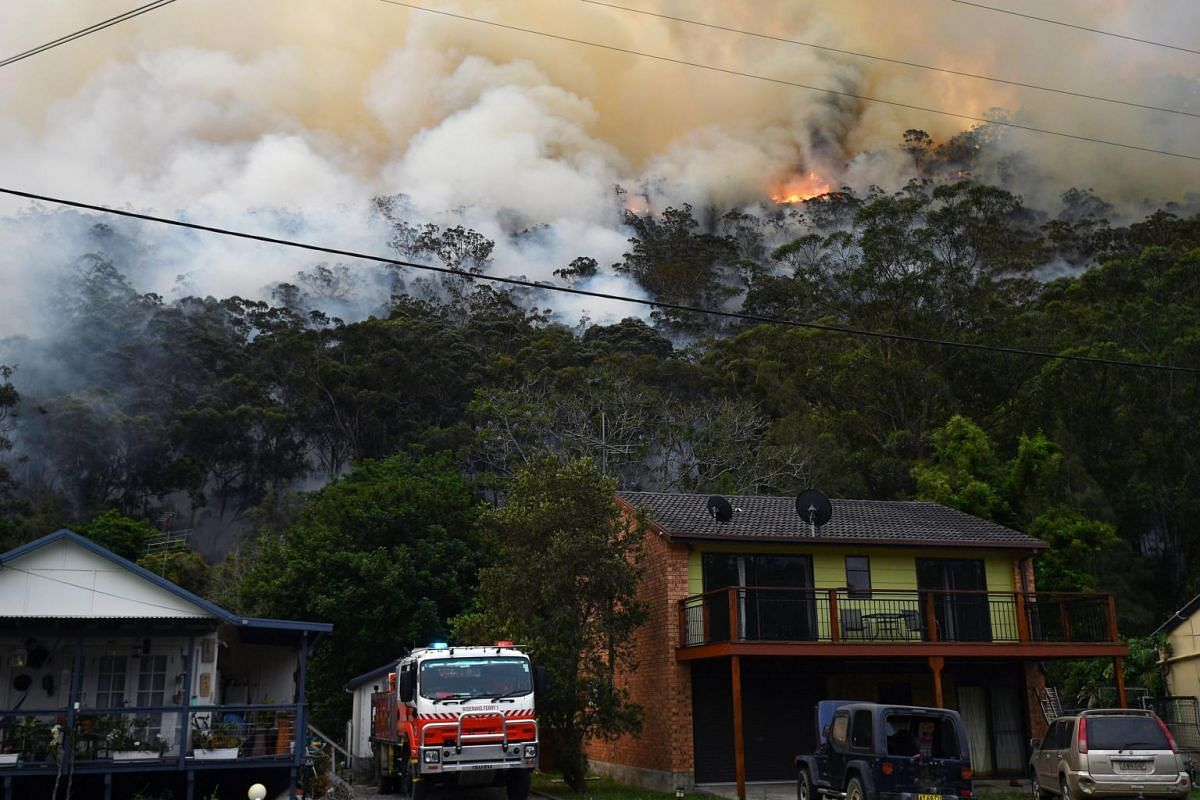 Smoke and flames from a back burn, conducted to secure residential areas from encroaching bushfires, at the Spencer area in Central Coast, in New South Wales, on Dec 9, 2019.
