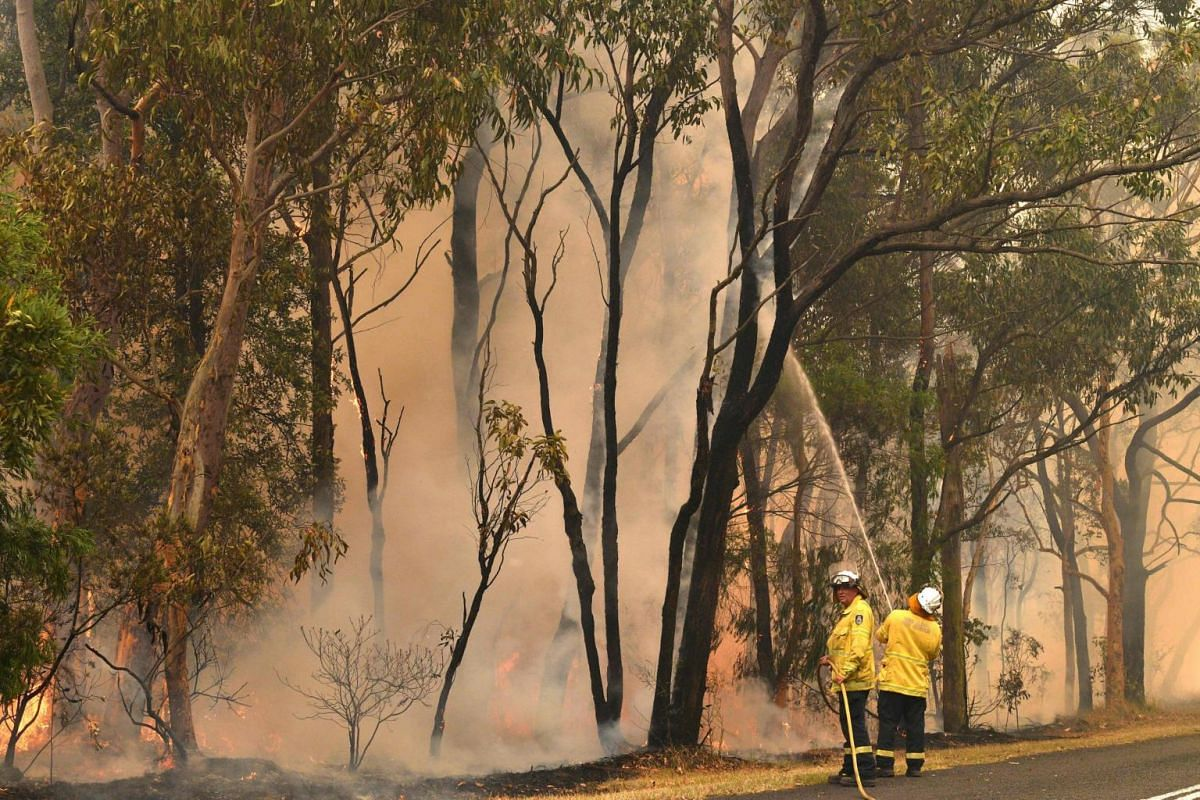Firefighters conduct back-burning measures to secure residential areas from encroaching bushfires in the Central Coast, in New South Wales, on Dec 10, 2019.