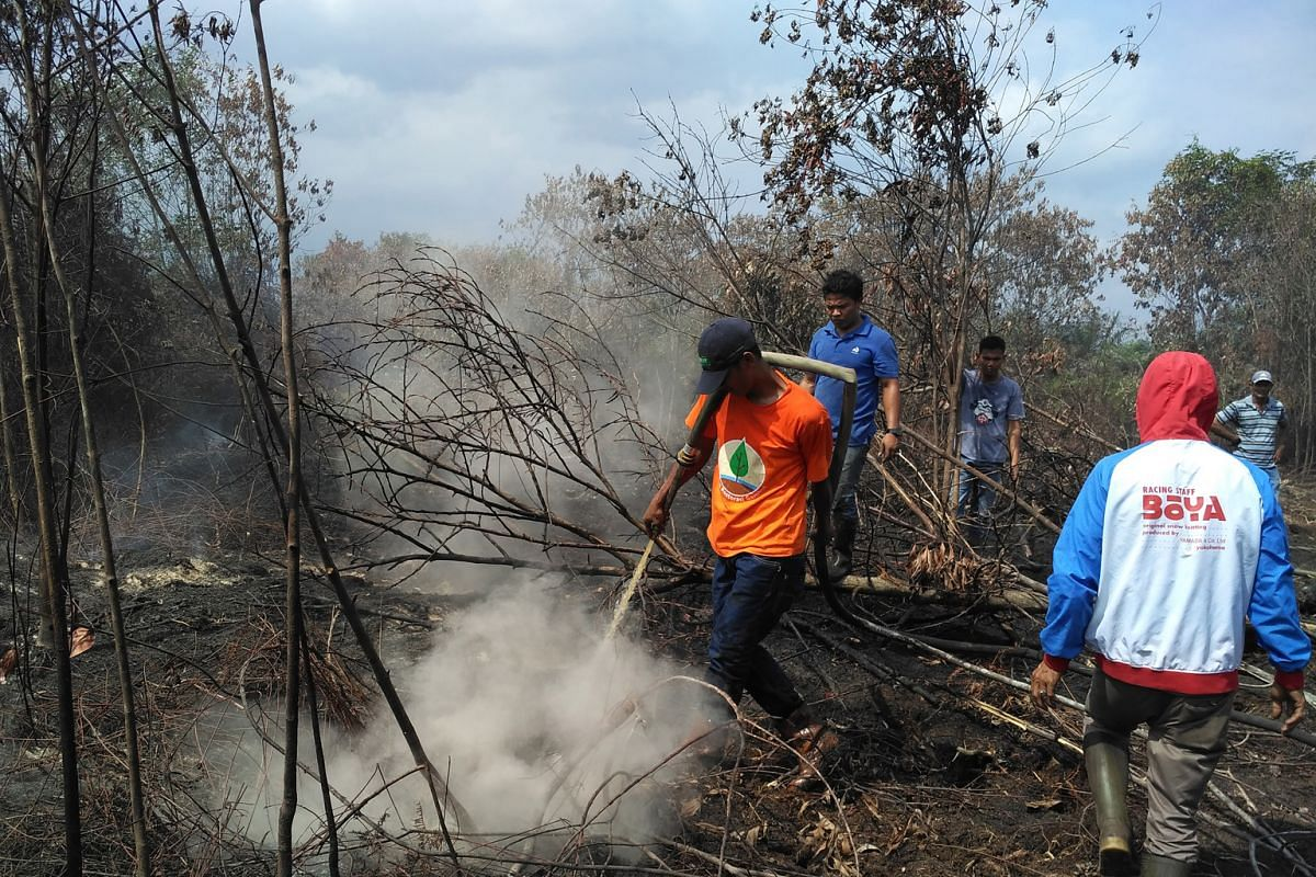 A firefighting team at work in Riau province during this year's dry season.