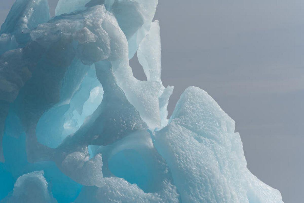Pockmarks on an iceberg off Half Moon Island.