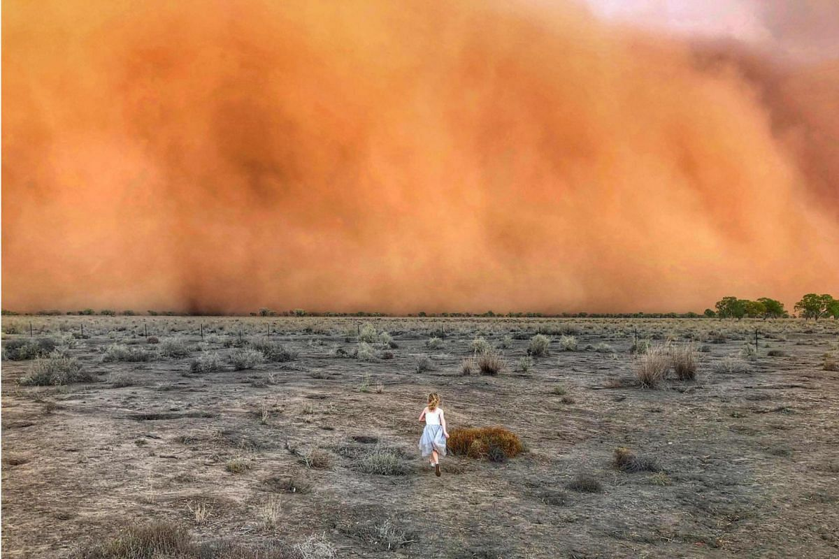 An approaching dust storm in Mullengudgery, New South Wales, on Jan 17, 2020.