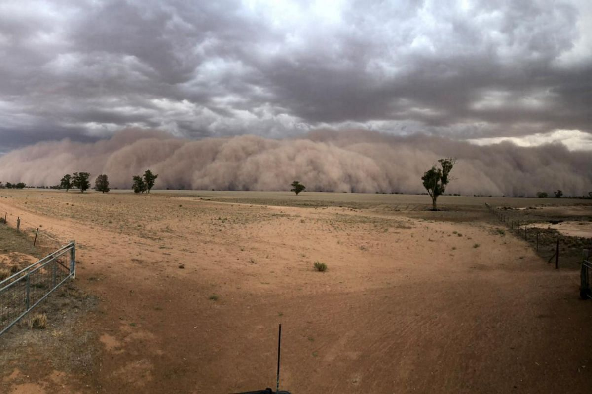 A dust storm approaching a farm in the north-west of Dubbo, New South Wales, on Jan 19.