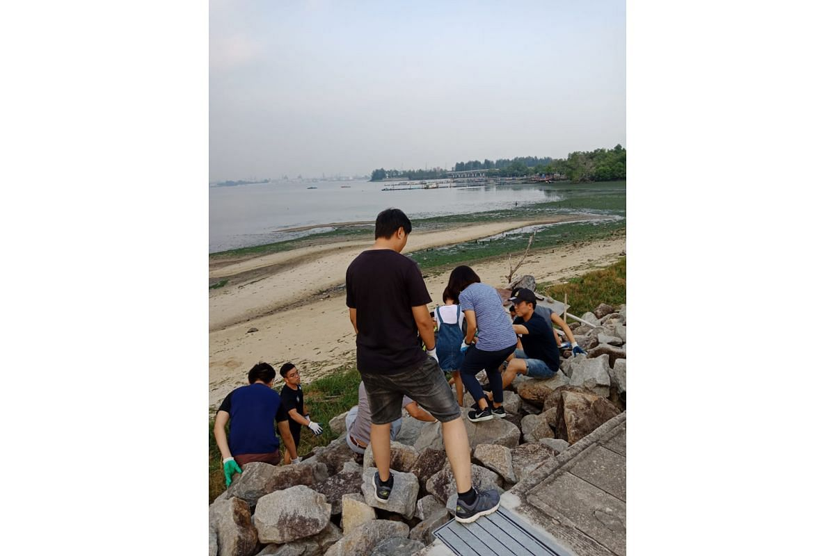 Twenty men and women took part in Singapore's first coastal clean-up dating event last September at Yishun Dam. It was organised by local matchmaking events firm GaiGai, which is planning another session next month.