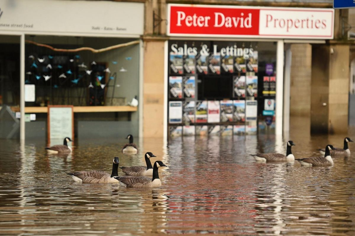 Geese take advantage of the conditions as floodwaters fill the streets of Hebden Bridge, northern England, on Feb 9, 2020.