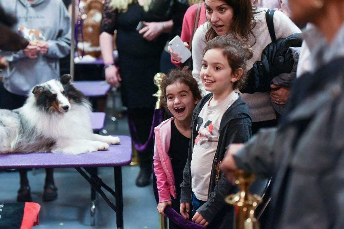 Children enjoy the dogs backstage during the annual Westminster Kennel Club Dog Show.