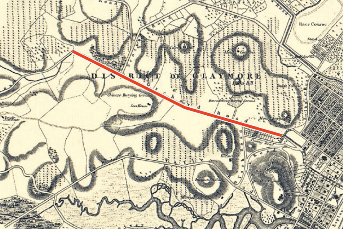"""The """"Plan of Singapore Town"""" map by John Turnbull Thomson in 1846, which shows Orchard Road (in red) flanked by nutmeg orchards (represented by dotted lines)."""