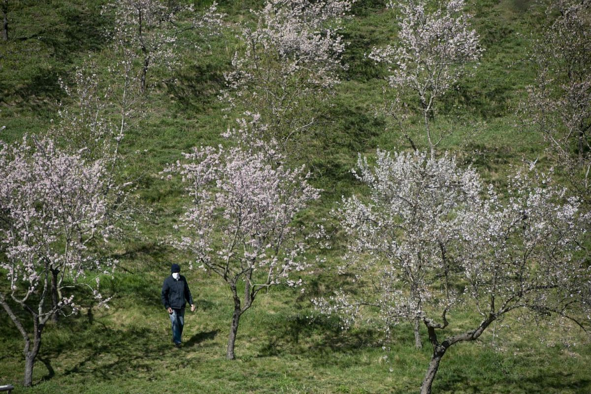 A man wearing a face mask walks in a park in Prague on March 23, 2020.