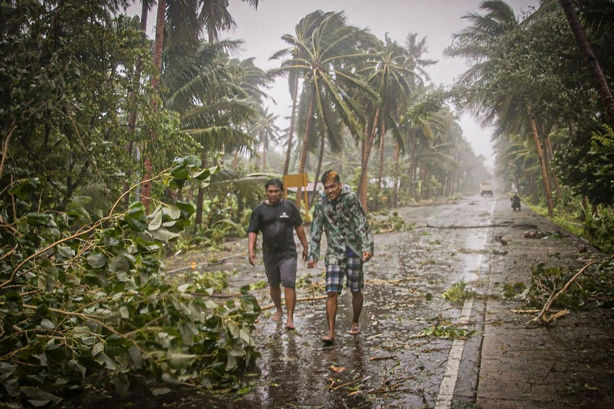 Residents brave rains and strong wind as they walk past uprooted trees along a highway in Can-avid town, Eastern Samar province, central Philippines on May 14, 2020, as Typhoon Vongfong makes landfall. PHOTO: AFP