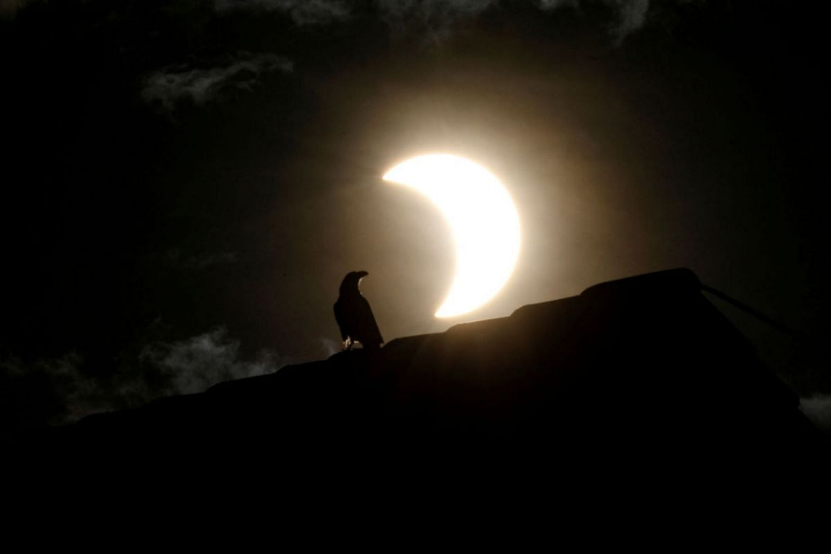 A crow stands on a roof as a partial solar eclipse is observed in Nairobi, Kenya, June 21, 2020. PHOTO: REUTERS