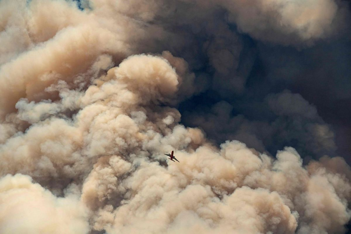 A firefighting airplane flies away from a pyrocumulus ash plume after making a retardant drop on a ridge as firefighters continue to battle the Apple fire near Banning, California on August 1, 2020. PHOTO: AFP