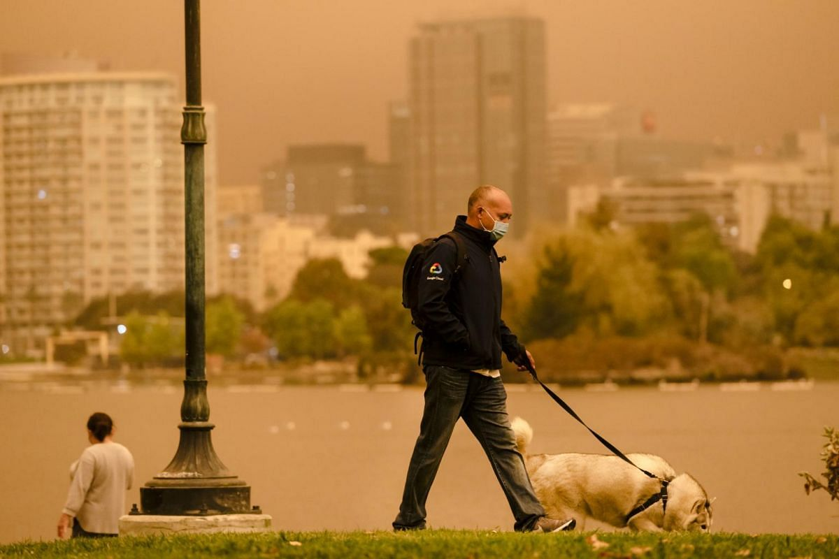 A pedestrian wearing a protective mask walks a dog as smoke hangs in the air in Oakland, California, US, on Sept 9, 2020.
