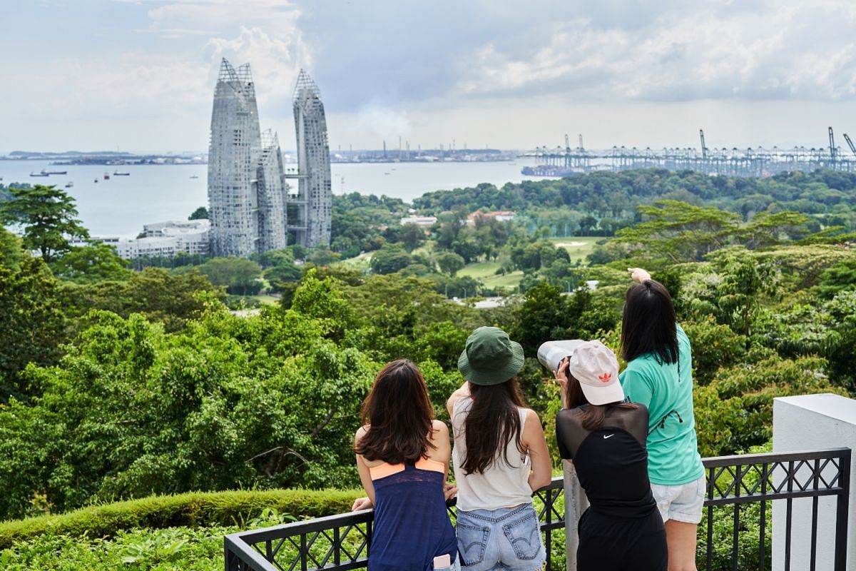 The Mount Faber tour includes a stop at Faber Point, a lush hilltop location with a panoramic view.