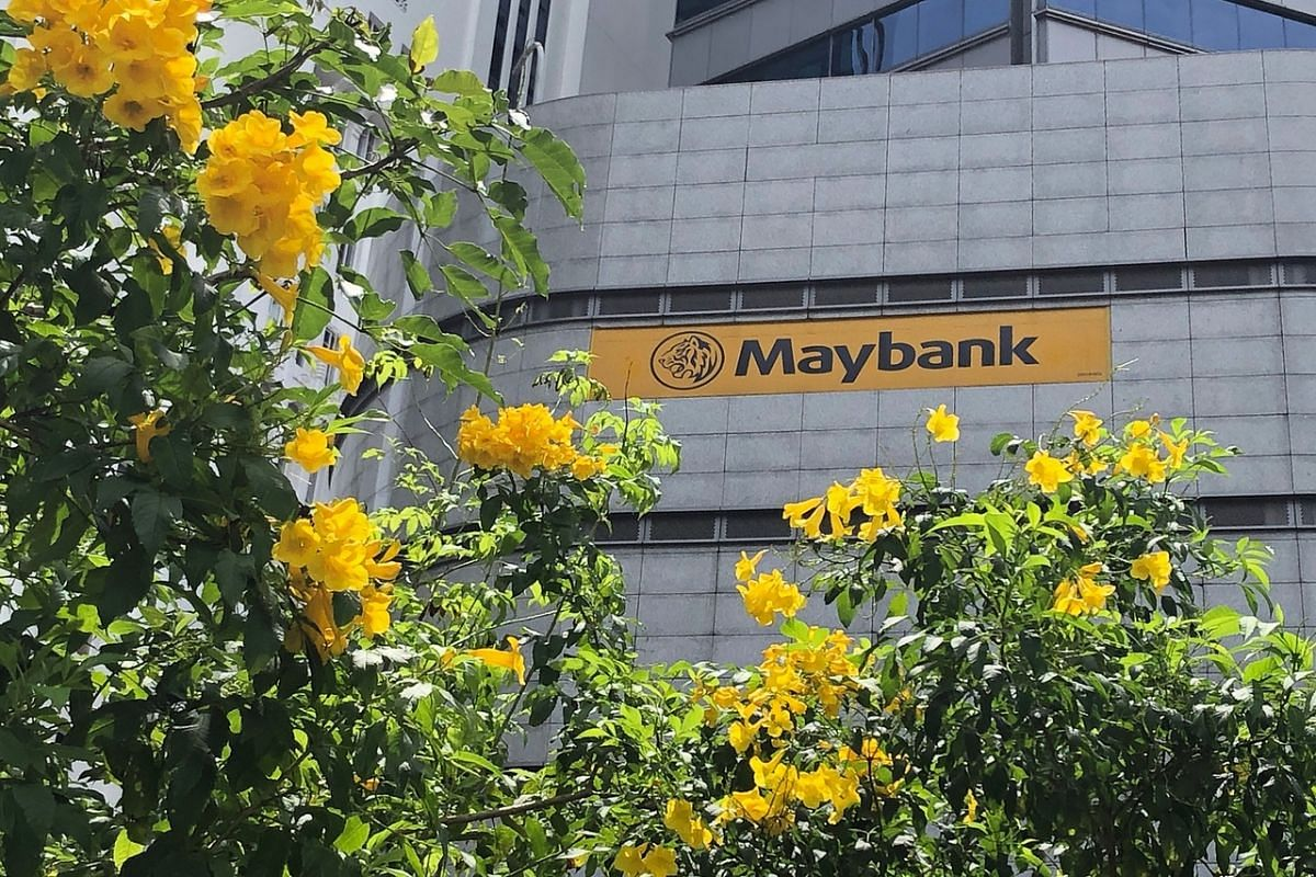 Yellow trumpet flowers seen outside Maybank Tower at Fullerton Square on Sept 11, 2020. Slightly fragrant, its flowersaretrumpet-shaped, brightyellowof up to 5 cm long.